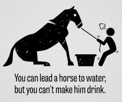 You can lead a horse to water…  by Jill Lubienski and Peter Jakob